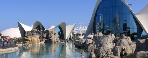 Oceanogràfic en Valencia